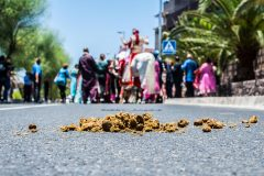 fotografo-de-bodas-DESTINATION-WEDDING-PHOTOGRAPHER-MATRIMONI-jiten-dadlani-Hochzeitsfotograf-photographe-de-mariage-5